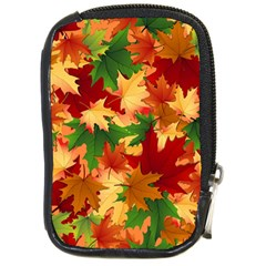 Autumn Leaves Compact Camera Cases