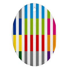 Color Bars Rainbow Green Blue Grey Red Pink Orange Yellow White Line Vertical Ornament (oval) by Alisyart