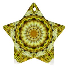 Fractal Flower Star Ornament (two Sides) by Simbadda