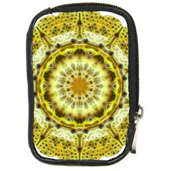 Fractal Flower Compact Camera Cases by Simbadda