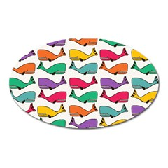 Small Rainbow Whales Oval Magnet by Simbadda
