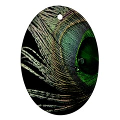 Feather Peacock Drops Green Oval Ornament (two Sides)
