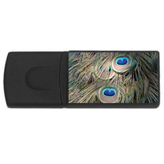 Colorful Peacock Feathers Background Usb Flash Drive Rectangular (4 Gb) by Simbadda