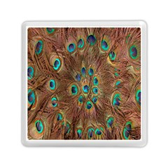 Peacock Pattern Background Memory Card Reader (square)  by Simbadda