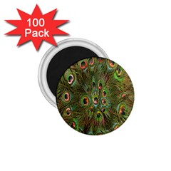 Peacock Feathers Green Background 1 75  Magnets (100 Pack)  by Simbadda