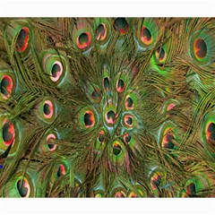 Peacock Feathers Green Background Canvas 20  X 24   by Simbadda