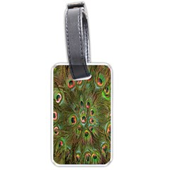 Peacock Feathers Green Background Luggage Tags (one Side)  by Simbadda