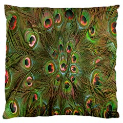Peacock Feathers Green Background Large Cushion Case (two Sides) by Simbadda