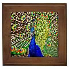Graphic Painting Of A Peacock Framed Tiles by Simbadda