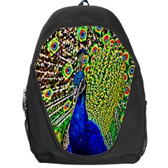 Graphic Painting Of A Peacock Backpack Bag