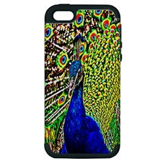 Graphic Painting Of A Peacock Apple Iphone 5 Hardshell Case (pc+silicone) by Simbadda