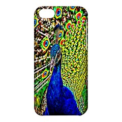 Graphic Painting Of A Peacock Apple Iphone 5c Hardshell Case by Simbadda