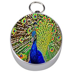Graphic Painting Of A Peacock Silver Compasses by Simbadda