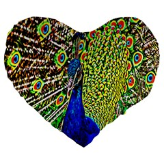 Graphic Painting Of A Peacock Large 19  Premium Flano Heart Shape Cushions