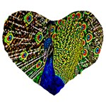 Graphic Painting Of A Peacock Large 19  Premium Flano Heart Shape Cushions Front