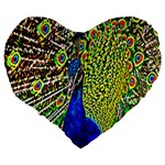Graphic Painting Of A Peacock Large 19  Premium Flano Heart Shape Cushions Back