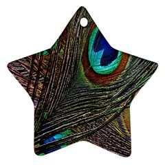 Peacock Feathers Ornament (star)