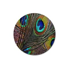 Peacock Feathers Magnet 3  (round) by Simbadda