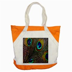 Peacock Feathers Accent Tote Bag by Simbadda