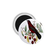 Bird On Branch Illustration 1 75  Magnets by Amaryn4rt