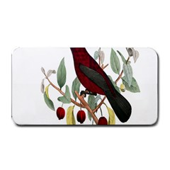 Bird On Branch Illustration Medium Bar Mats by Amaryn4rt