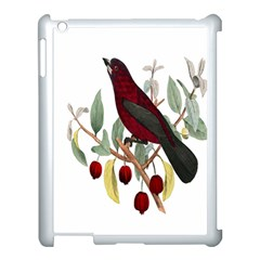 Bird On Branch Illustration Apple Ipad 3/4 Case (white) by Amaryn4rt