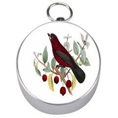 Bird On Branch Illustration Silver Compasses by Amaryn4rt