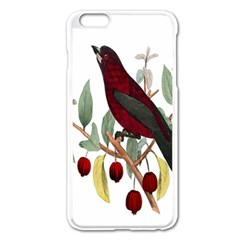 Bird On Branch Illustration Apple Iphone 6 Plus/6s Plus Enamel White Case by Amaryn4rt