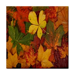 Colorful Autumn Leaves Leaf Background Tile Coasters by Amaryn4rt
