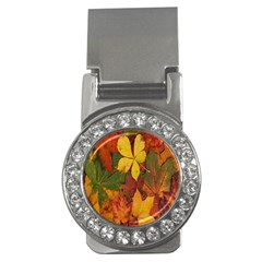 Colorful Autumn Leaves Leaf Background Money Clips (cz)  by Amaryn4rt