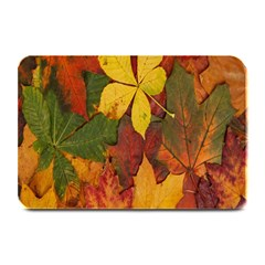 Colorful Autumn Leaves Leaf Background Plate Mats by Amaryn4rt