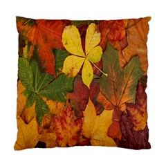 Colorful Autumn Leaves Leaf Background Standard Cushion Case (one Side) by Amaryn4rt