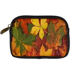Colorful Autumn Leaves Leaf Background Digital Camera Cases by Amaryn4rt