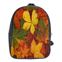 Colorful Autumn Leaves Leaf Background School Bags (xl)  by Amaryn4rt