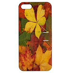 Colorful Autumn Leaves Leaf Background Apple Iphone 5 Hardshell Case With Stand by Amaryn4rt