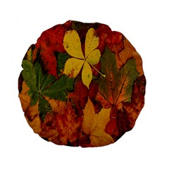 Colorful Autumn Leaves Leaf Background Standard 15  Premium Flano Round Cushions by Amaryn4rt
