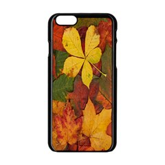 Colorful Autumn Leaves Leaf Background Apple Iphone 6/6s Black Enamel Case by Amaryn4rt