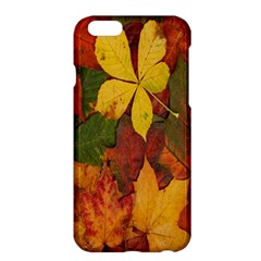 Colorful Autumn Leaves Leaf Background Apple Iphone 6 Plus/6s Plus Hardshell Case by Amaryn4rt