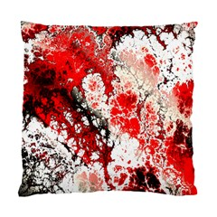 Red Fractal Art Standard Cushion Case (two Sides) by Amaryn4rt