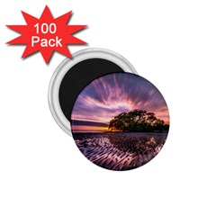 Landscape Reflection Waves Ripples 1 75  Magnets (100 Pack)  by Amaryn4rt