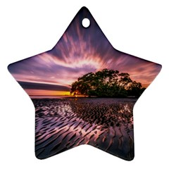 Landscape Reflection Waves Ripples Star Ornament (two Sides) by Amaryn4rt