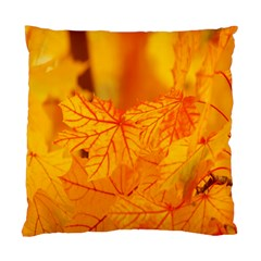 Bright Yellow Autumn Leaves Standard Cushion Case (two Sides) by Amaryn4rt