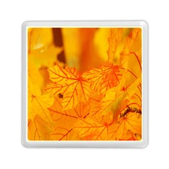Bright Yellow Autumn Leaves Memory Card Reader (square)  by Amaryn4rt