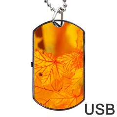 Bright Yellow Autumn Leaves Dog Tag Usb Flash (two Sides) by Amaryn4rt