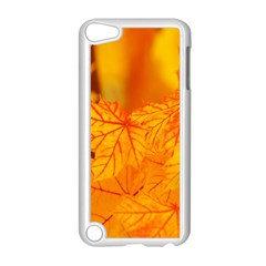 Bright Yellow Autumn Leaves Apple Ipod Touch 5 Case (white) by Amaryn4rt