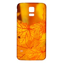 Bright Yellow Autumn Leaves Samsung Galaxy S5 Back Case (white) by Amaryn4rt