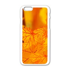 Bright Yellow Autumn Leaves Apple Iphone 6/6s White Enamel Case by Amaryn4rt