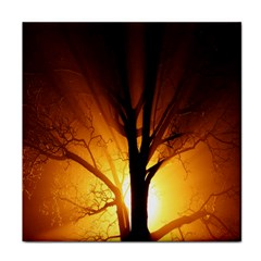 Rays Of Light Tree In Fog At Night Tile Coasters by Amaryn4rt