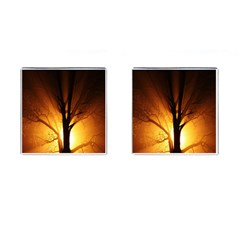 Rays Of Light Tree In Fog At Night Cufflinks (square) by Amaryn4rt