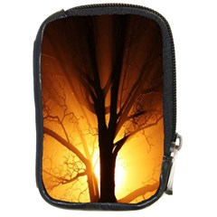 Rays Of Light Tree In Fog At Night Compact Camera Cases by Amaryn4rt